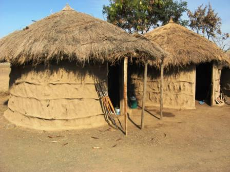 traditional-african-houses